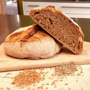 pain à la farine de blé ancien et de triticale